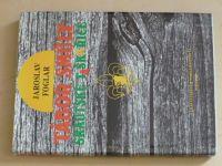 Foglar - Tábor smůly skautské taškařice (1990)