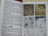 Richarz - Atlas stop zvířat - Jak je poznávat a určovat (2009)