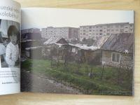 Socha příběhů a její kameny (2008) ed. Ivo Mludek