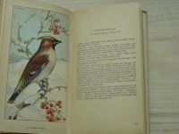 Greutz - Taschenbuch der Heimischen Singvögel (1954) německy, Zpěvní ptáci