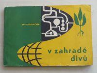 Kloboučník - V zahradě divů (1964)