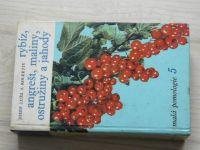 Luža - Rybíz, angrešt, maliny, ostružiny a jahody M.pomologie 5