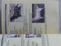 Katalog retrieverů (2001)