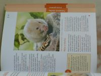 Gaßner - Křeček milý, roztomilý, aktivní (2006)