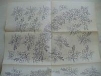 Frühlingsblüten 2146 (německy)