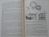 Hliněnský - Pneumatiky a jejich údržba (1953)