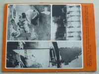 Léto s Haló sobotou (1971)