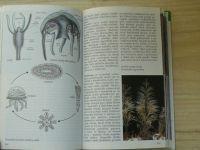 Průvodce přírodou - Reichholf - Mořské pobřeží - Ekologie mořských životních prostředí Evropy