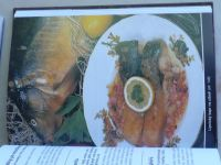 Doležal - Myslivec a rybář v kuchyni (2001)