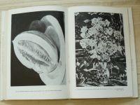 Zykmundovi - Díváme se na obrazy (1956)