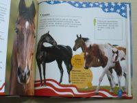 Američtí koně snů