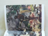 Defoe (Pleva) - Robinson Crusoe (SNDK 1967) il. Burian