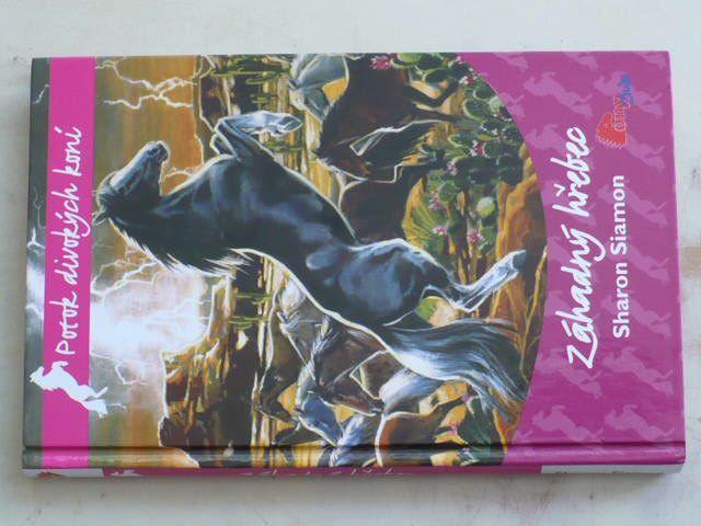 Potok divokých koní 1 - Siamon - Záhadný hřebec (2009)