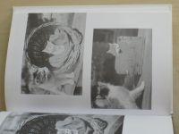 Čapek - Pudlenka aneb Měl jsem psa a kočku (2004)