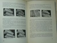 Glézl - Dimenzovanie priamych čelných kolies (1958) slovensky