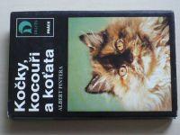 Pintera - Kočky, kocouři a koťata (1989)