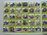 Pexeso 32 - Zoo Praha (nedatováno)