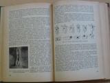 Hendrych - Ochrana lesů (1959) Učební text pro LTŠ