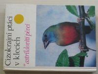 Vít - Cizokrajní ptáci v klecích - astrildovití pěvci (1978)