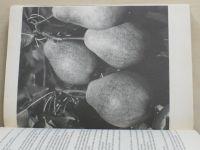Dvořák - Atlas odrůd ovoce (1978)