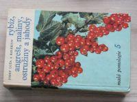 Malá pomologie 5 - Rybíz, angrešt, maliny, ostružina a jahody (1967)