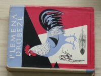 Plemena drůbeže - Příručka pro drobné chovatele (1969)