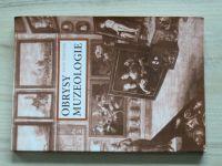 Štěpánek - Obrysy muzeologie pro historiky umění (2002)