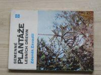 Zavadil - Semenné plantáže lesních dřevin (SZN 1982)