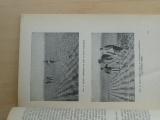 Conin - Zlepšené pracovní methody při pěstování řepky a řepice 1943