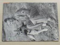 Pes přítel člověka 10 (1972) ročník XVII.