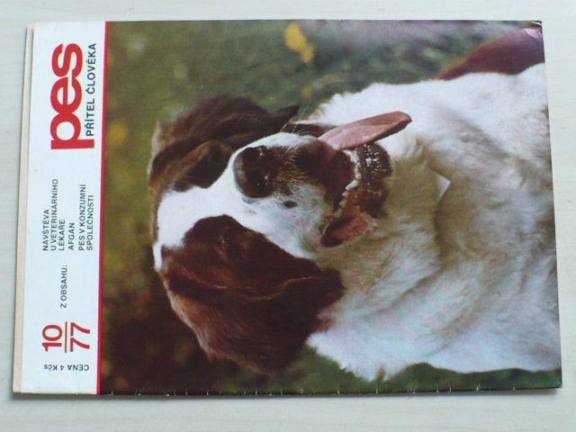 Pes přítel člověka 10 (1977) ročník XXII.
