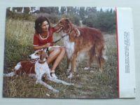 Pes přítel člověka 9 (1977) ročník XXII.