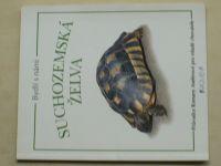 Bydlí s námi suchozemská želva