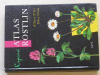Pilát - Kapesní atlas rostlin (1976)
