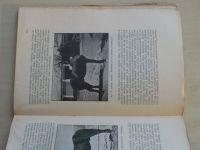 Babor, Šulc - Rolnický chov koní a prostředky k jeho provozu a zvelebení v Českosl. republice (1925)