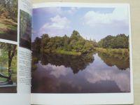 Olomouc od minulosti k současnosti (1981)