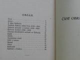 Nopp - Špilberk jeho dějiny a památnosti (1926)