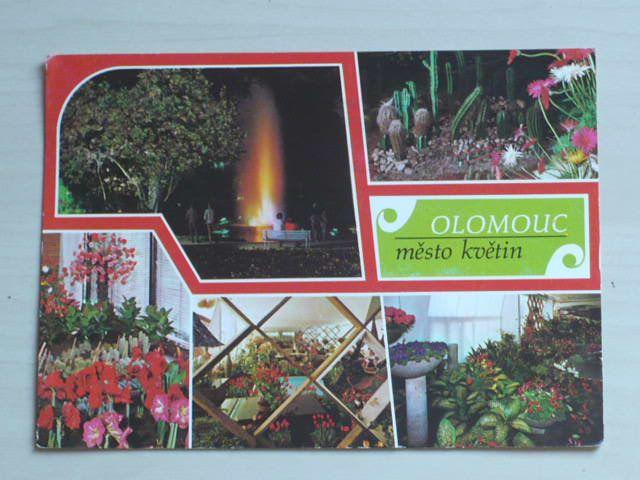 Olomouc - město květin