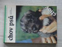 Procházka - Chov psů (1989)