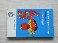 Luža - Pěstování a zužitkování drobného ovoce (1966)