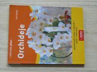 Pinske - Orchideje - Nejkrásnější druhy a hybridy - výběr - pěstování (2009)