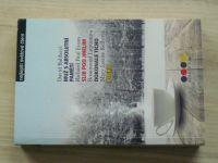 Nejlepší světové čtení - Baldacci - Muž s absolutní pamětí, Slib pod jmelím, Dokonalé ticho, Kulka