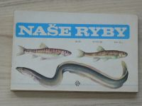 Mihálik, Reiser - Naše ryby (1986)