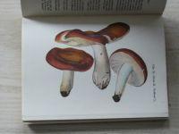 Smotlacha, Vejrych - 50 druhů hub, které doporučujeme sbírati (1944)