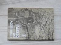Blažek, Olmrová - Průhledy do dětství (1986)