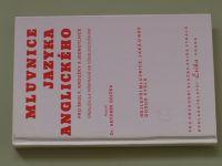 Osička - Mluvnice jazyka anglického (1995)