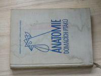 Kolda, Komárek - Anatomie domácích ptáků (s nárysem fyziologie) (SZN 1958)
