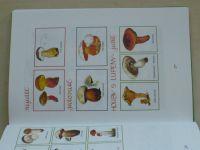Plicková - Vandrovní knížka pro správné kluky a holky (1997)