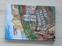 Johns - Biggles na vlastní pěst (1996)