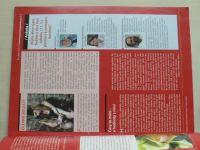 Psychologie dnes 5 (2011) ročník XVII.